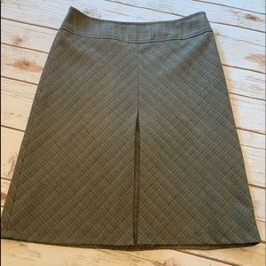 The Limited Skirt Size 2